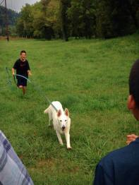 Residency graduate Tundra and his family practicing a motivational recall request. requests.