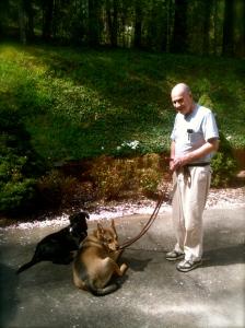Toby, Blaze and their Guardian having fun training.