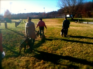All the dogs and Guardians had an excellent time training in the advanced Distraction Proofing class at Carrier Park.