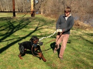 Frank's Guardian rewards him with an action packed game of tug.