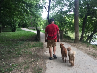 Off leash heeling becomes a reality.